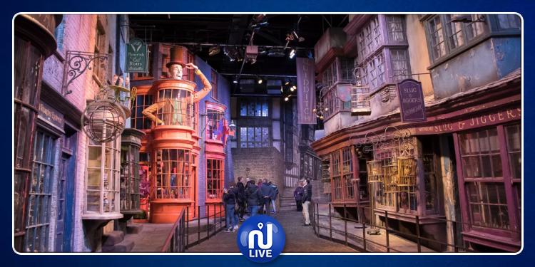 Harry Potter reproduit à Lyon