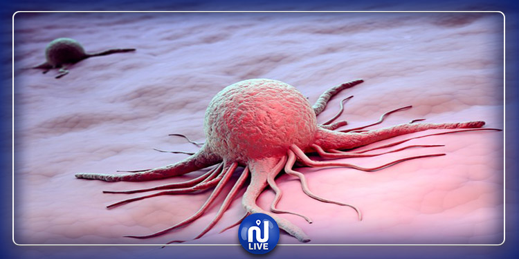 Cette découverte sur le système immunitaire peut aider à traiter tous les cancers