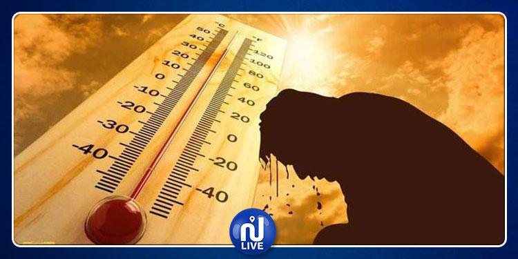تحذير: درجات الحرارة ستكون شديدة للغاية في المستقبل