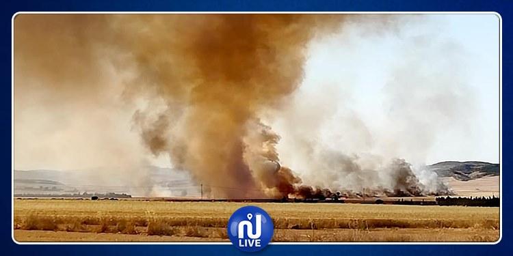 سليانة: اندلاع حريق بمزارع الحبوب بسيدي برويس