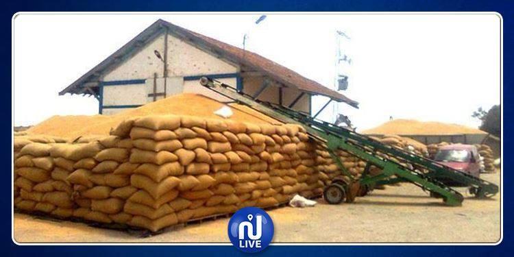 استئناف نشاط مراكز تجميع وتخزين الحبوب