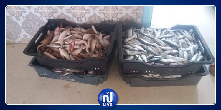 العلا: عون مراقبة صحية يوجه رسالة للمواطنين بعد حجز أسماك وكمية ياغورت فاسدة
