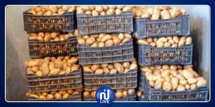 قفصة : حجز 50 طنّا من البطاطا المحلّية مخفية بمخزن بمنطقة زانوش