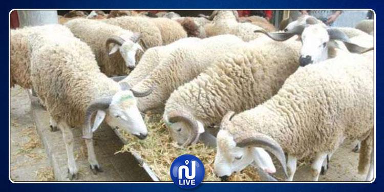 فلكيا: تحديد أول أيام عيد الأضحى المبارك