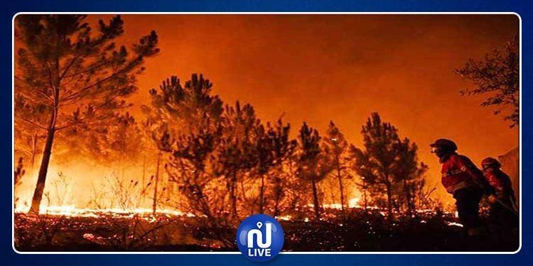 الامم المتحدة تعلّق على كارثة الحرائق بغابات الأمازون