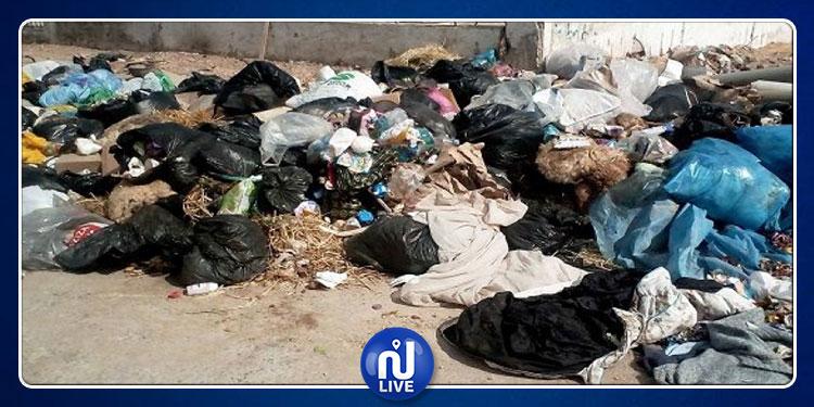 نابل: إزالة مصب فضلات عشوائي تسبب في العديد من الأمراض