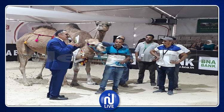 الصالون الدولي للفلاحة: فلاح من حزوة يحصد الجائزة الأولى لمسابقة أحسن بكرة