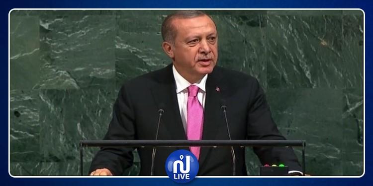 أردوغان: مجلس الأمن الدولي عاجز عن حل هذه المشكلة