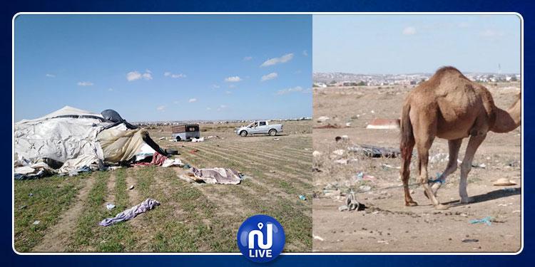 حملات إزالة وإخلاء لـ''نجع قمرة ''بالمروجات (صور)