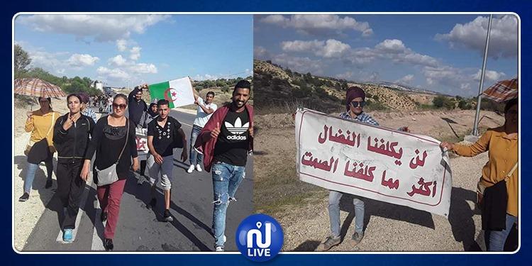 احتجاجا ضد التهميش: شباب اعتصام التشغيل بالكاف يتجهون نحو الجزائر
