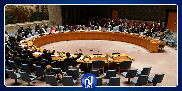 دعوة لإنعقاد مجلس الامن لبحث الهجوم التركي على شمال سوريا