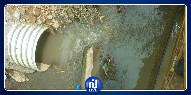مسؤولون وخبراء من تونس وألمانيا يبحثون سبل التعاون في إدارة قطاع المياه المستعملة