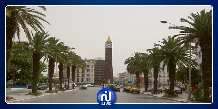 مخطط أخضر لتحويل بلدية تونس إلى ''مدينة الحدائق''
