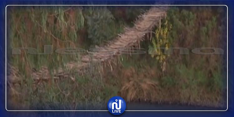 منوبة: متساكنو شواط يصافحون الموت يوميا عبر جسر من القصب (فيديو)