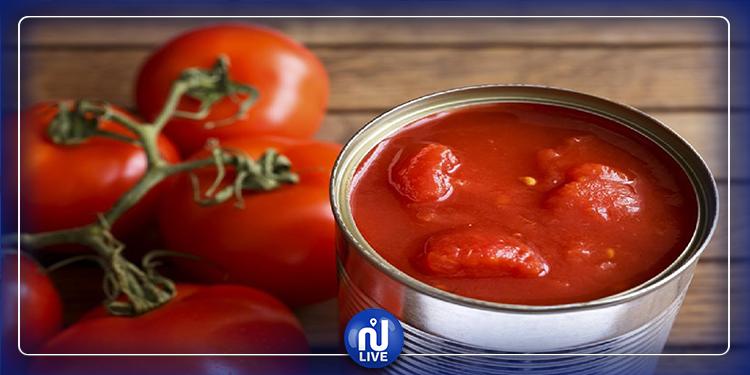 دعوة الفلاحين إلى عدم التسرّع في زراعة الطماطم الفصلية