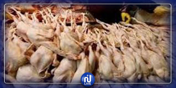 بوسالم: مداهمة مستودع وحجز كمية من الدجاج