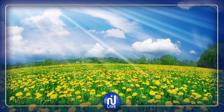 تواصل الملامح الربيعية لحالة الطقس