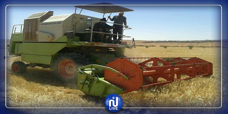 بروتوكول صحّي للفلاحين خلال  فترة الحصاد