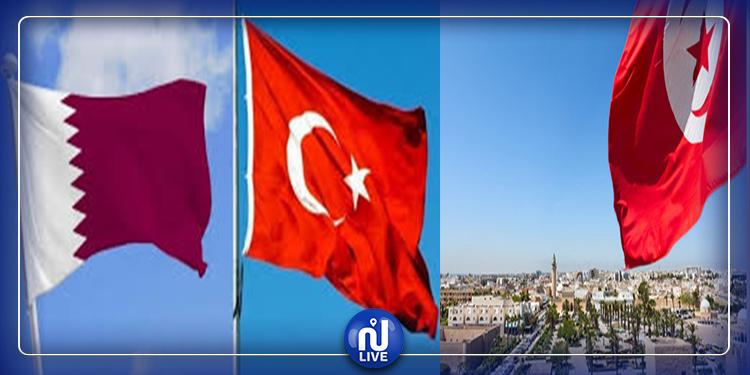 محسن حسن يعلق على اتفاقيتي تركيا وقطر مع تونس