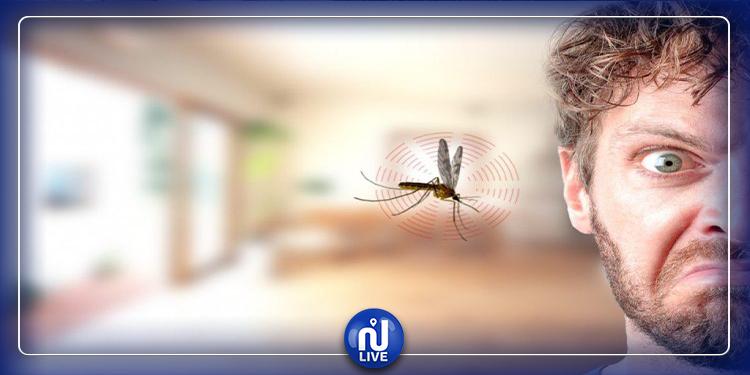 حلول طبيعية للتخلّص من الناموس