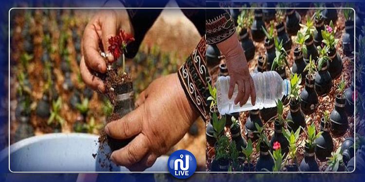 فلسطينية تحوّل قنابل الكيان الصهيوني إلى حديقة أزهار (صور)