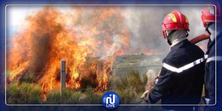 السلط الأمنية تتعهد بالبحث في الحرائق
