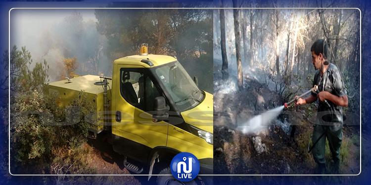 الكاف: حريقان متزامنان في جبلي كشيريد وبلوط