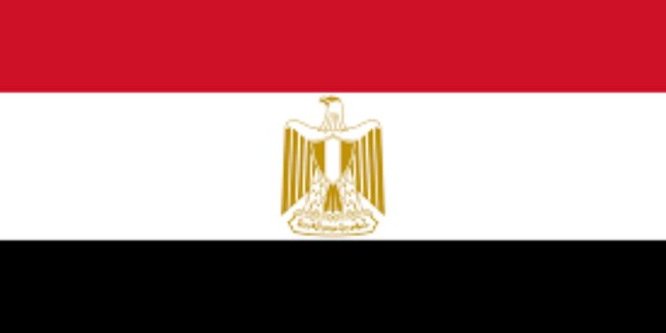 مسؤول مصري يعلن استقالته في برنامج تلفزي ( فيديو)