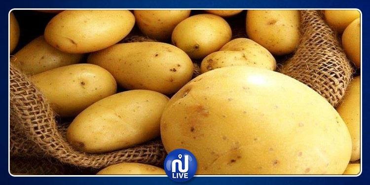 ''ظهور أعراض مرضية على منتوجات البطاطا'': وزارة الفلاحة توضّح
