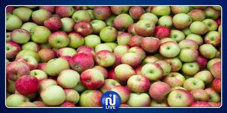 بن عروس: حجز أكثر من 40 طنّا من الدقلة والتفاح