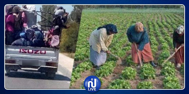 مدنين:  انقلاب شاحنة  تقل نساء ناشطات في المجال الفلاحي