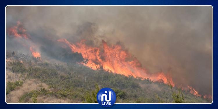 حريق يأتي على صابة حبوب بالكاف