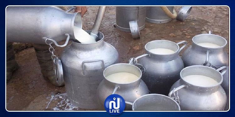 تم نقله في ظروف غير صحية:  إتلاف 1000 لتر من الحليب بالكاف