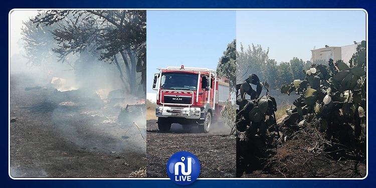 سجنان: حريق يأتي على 8 هكتارات 'حصيدة' وزيتون وبيوت نحل