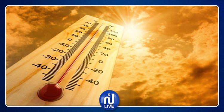 نصائح لمواجهة درجات الحرارة المرتفعة