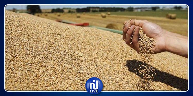 توقع الانتهاء من تجميع بقية صابة الحبوب بداية سبتمبر 2019