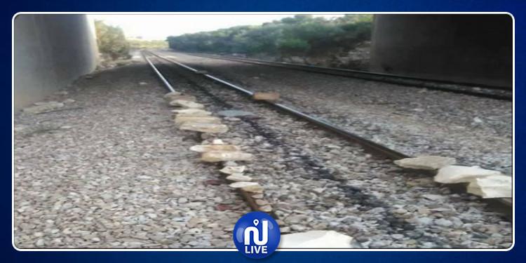 إحتجاجا على دهس قطار لتلميذة: عدد من متساكني الحمامات يقطعون السكة الحديدية