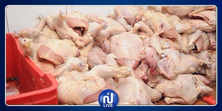 نابل: إيقاف سيارة محملة بأكثر من 200 كغ من الدجاج المذبوح بطريقة غير قانونية