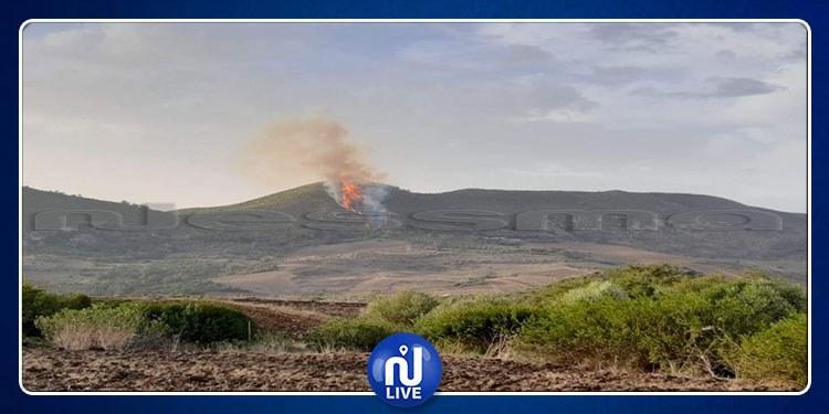 باجة: اندلاع حريق بجبل سيدي حمد بنفزة