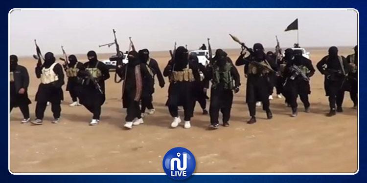 مساعي حثيثة من تركيا لإعادة مقاتلي داعش إلى بلدانهم