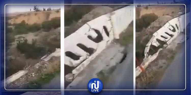 سليانة: وضعية كارثية لجسر وادي اللحم (فيديو)