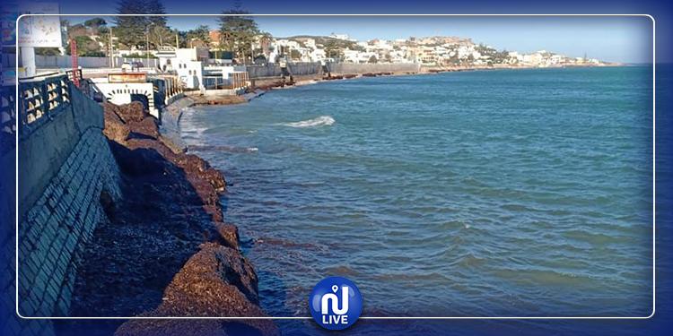 Catastrophe naturelle : les habitants de Bizerte lancent un appel de détresse