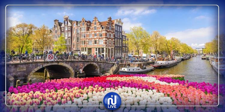 هولندا تستغني عن هولندا.. مالحكاية؟