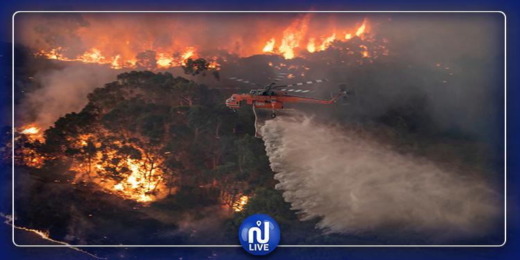 حرائق أستراليا: النيران تلتهم طائرة تقل 3 أشخاص