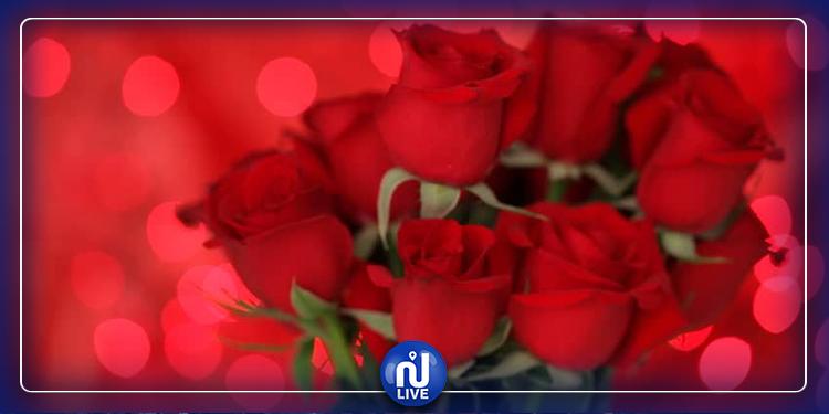 في عيد الحب.. 5 أنواع من الورود قدمها لحبيبتك