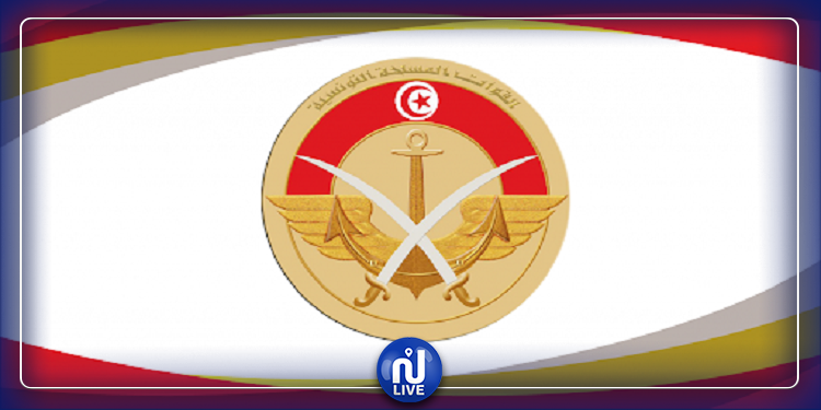 وزارة الدفاع: أحداث رمادة تزامنت مع تصاعد محاولات التسلل الغير شرعية