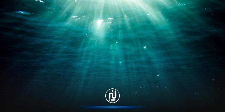 علماء يكتشفون زاحف بحري غامض