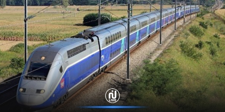 الإعلان عن  تحويرات على بعض قطارات نقل المسافرين