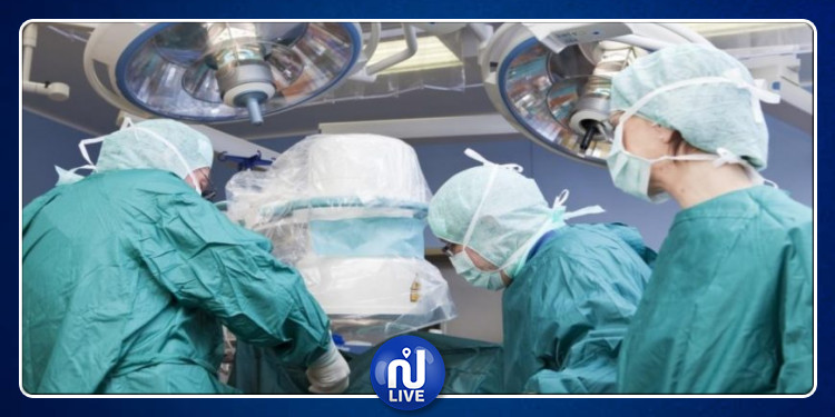 (نيويورك: 3 قردة يخضعون لعمليات جراحية في القلب (فيديو