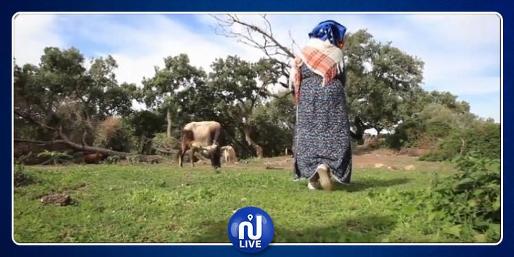 توفير 3550 قرضا بقيمة 20 مليون دينار لدعم المرأة الريفية